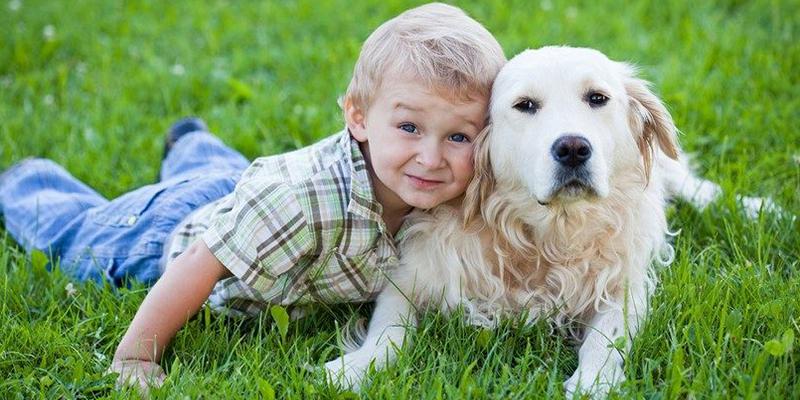 Cara ajak anak cintai binatang