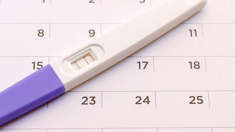 Menggunakan Kalender Kehamilan